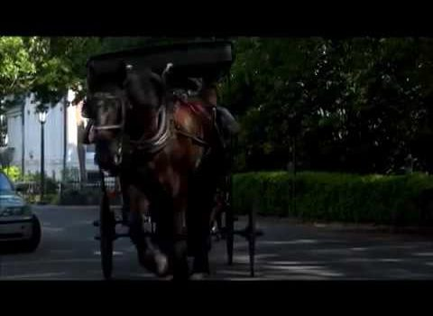 Aerials: Carriage Ride Savannah